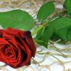 Valentinstag – Tag der Liebenden